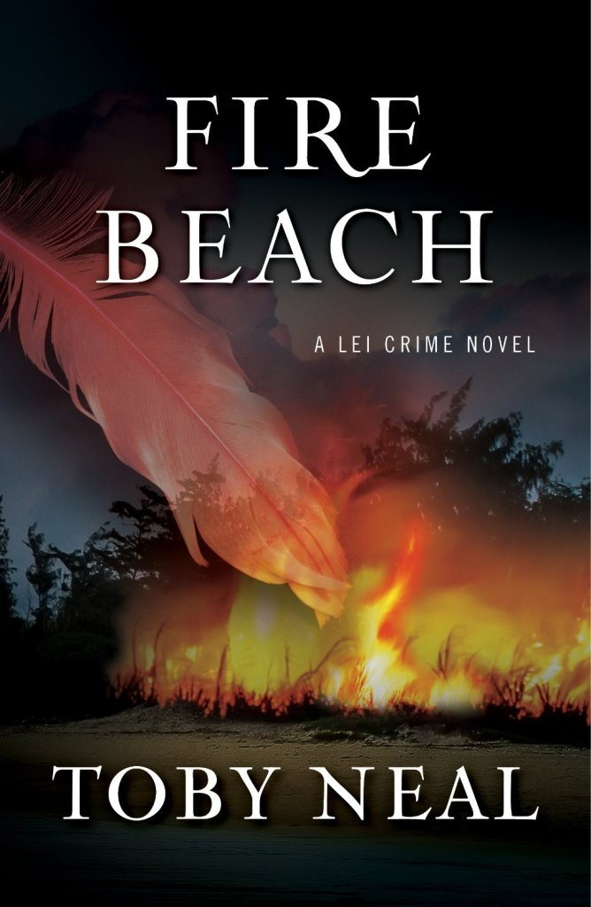 Fire Beach by Toby Neal